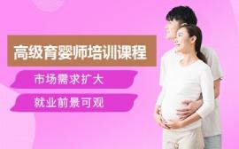 武汉高级育婴师培训
